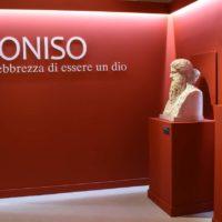 Dioniso5-marrc
